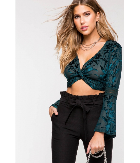 Imbracaminte Femei CheapChic Romantic Dreams Velvet Crop Top Hunter