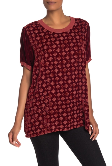 Imbracaminte Femei Johnny Was Portia Embroidered Velvet Short Sleeve Top CARNELIAN